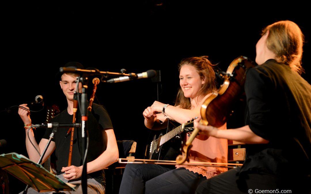 Folk'n'Walde: Das Folx-Musik-Festival in der Domstadt