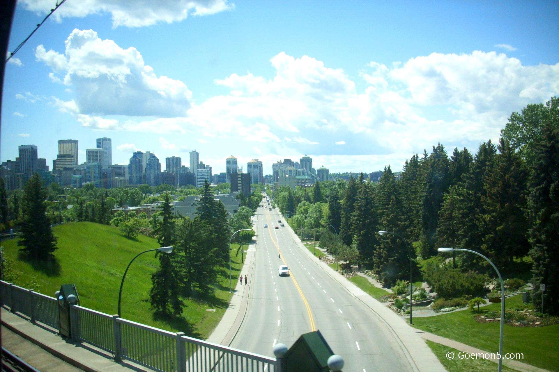 Calgary City 115
