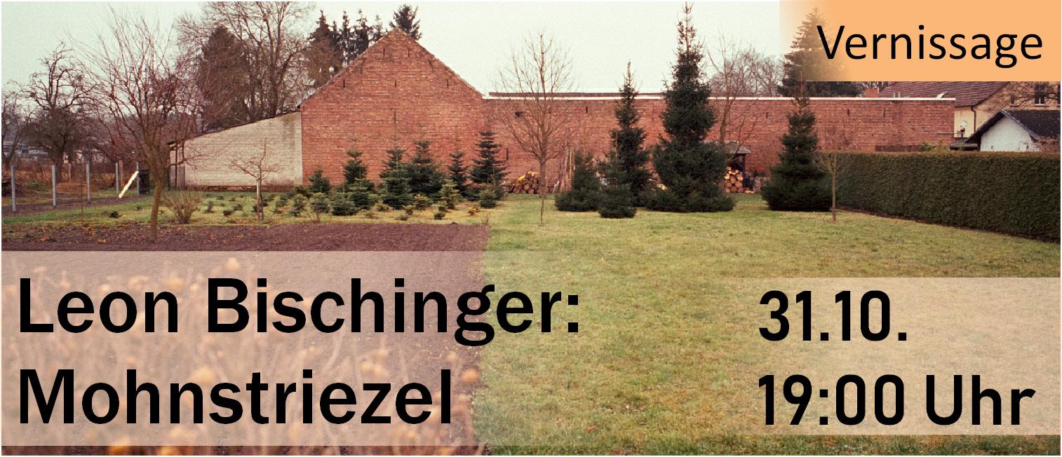 Leon Bischinger: Mohnstriezel